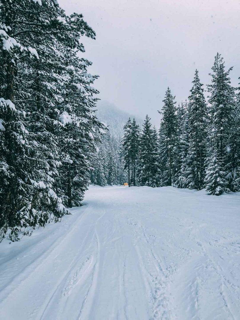 χιονοδρομικά Bansko