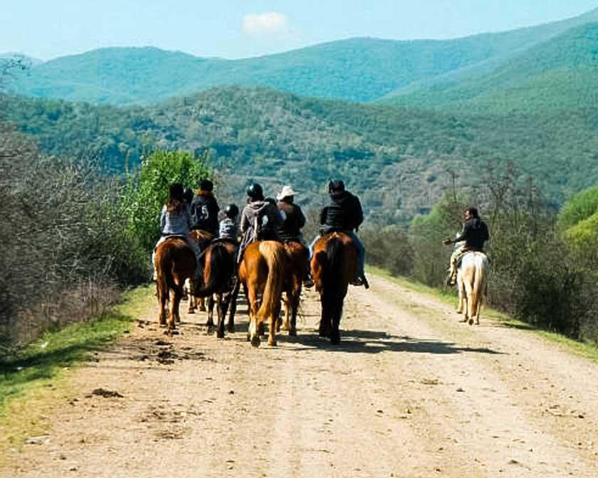 στη λίμνη Κερκίνη άλογα travelshare.gr