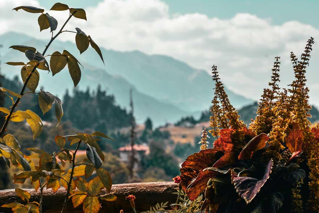 Χωριά της Φωκίδας - Καστριώτισσα θέα